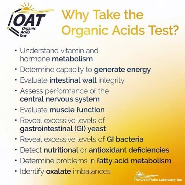 Why Take The Organic Acids Test?